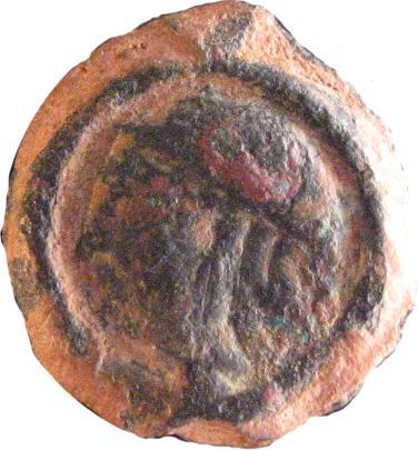 Bronze à l'Aigle des Carnutes [WM n° 8420] 450804223