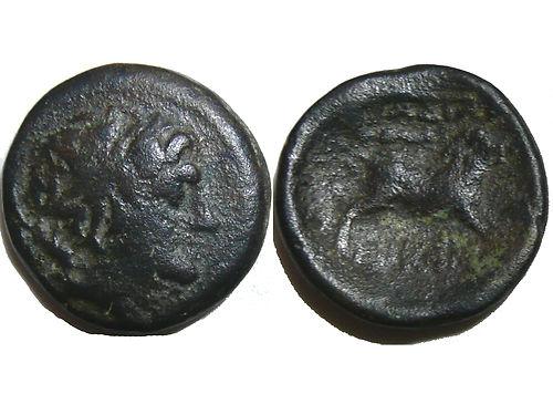 Moneda rara con cerdo 210378433