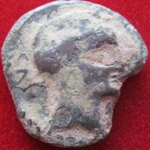 Semis de Castulo S. II a.C. (Cazlona,Jaén) 229775234