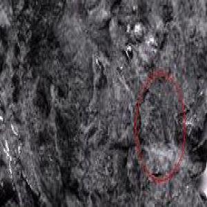 identificar ceca en Cruzado Enrique II 469196000