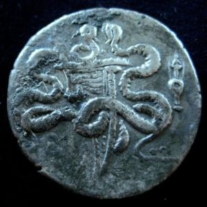 Cistóforo tetradracma de Efeso, Ionia 929346141