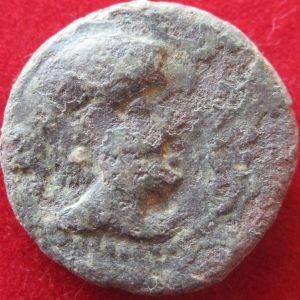Semis de Cástulo (S. II a.C.) 950889406