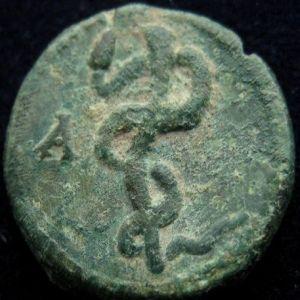 AE 15 de Syria, Seleucis and Pieria, Antioquia? (antiguamente atribuida a Pérgamo) 109197001