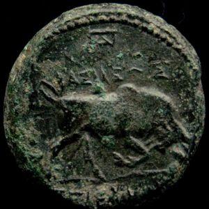 AE 18 de Seleukos I Nikator, ceca Antioquia ad Orontem 377531944