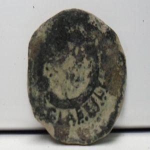 Semis de Cartagonova. 663547965