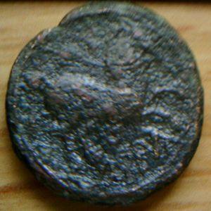 Semis de Konterbia Karbica (Siglo II-I a.C.) 984844451